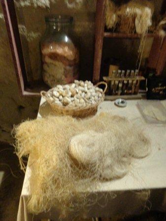 La Magnanerie du Coudray: Cocons et fil de soie