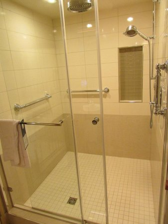 BEST WESTERN PLUS City Centre/Centre-Ville : The shower was large, walk-in and had both wall and rain shower.