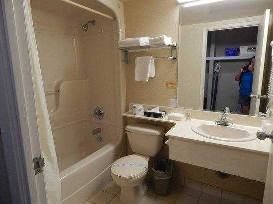 Monte Carlo Inn Oakville Suites: Bathroom