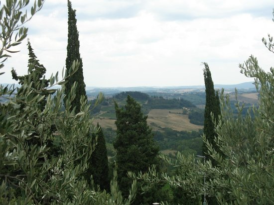 Fattoria Santo Stefano: Views from the town houses