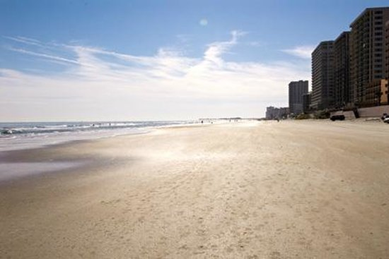 Atlantic Ocean Palm Inn: Miles of beautiful beach
