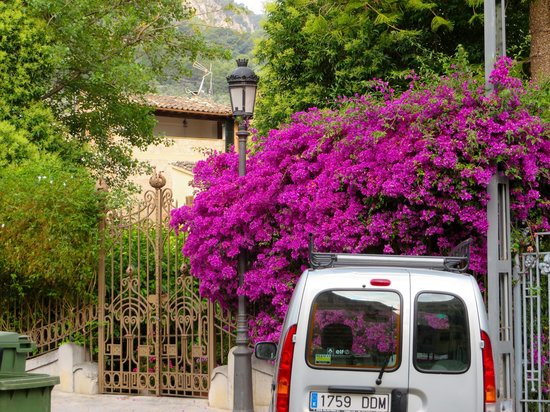 Ca'n Isabel: From the back- the garden gate opens to the tram stop