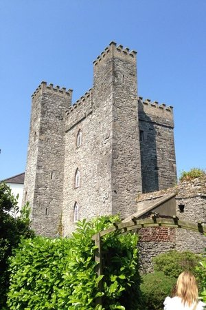 Barberstown Castle : Beautiful location