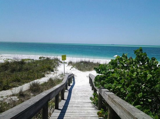 Anna Maria Motel & Resort Apartments: Pathway to playtime