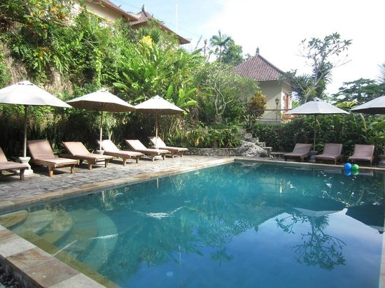Lembongan Cliff Villas: pool