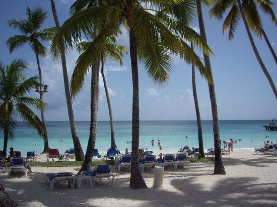 Dreams La Romana Resort & Spa: Beach