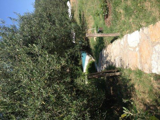 Slow Life Umbria - Relais de charme: Prachtige tuin naar zwembad