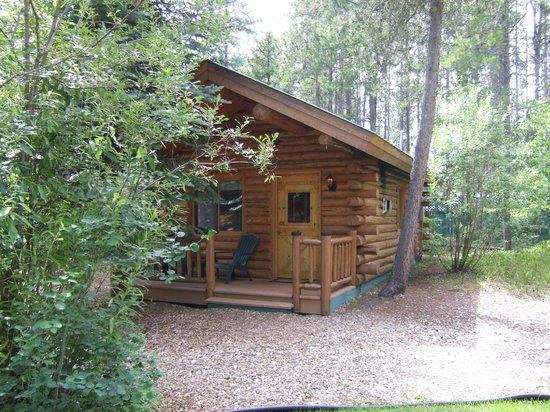Silverwolf Log Chalet Resort: Cabin #4