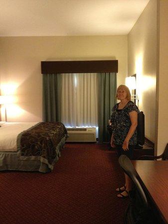 Microtel Inn & Suites by Wyndham Harrisonburg : Wonderful color scheme
