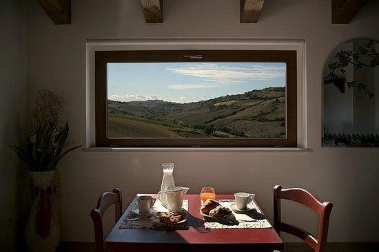 Agriturismo Marche Life: Sala colazioni