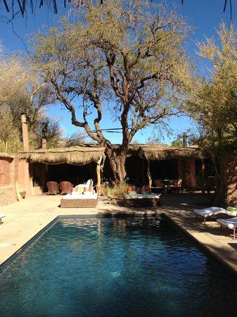 Awasi Atacama - Relais & Chateaux: La piscina