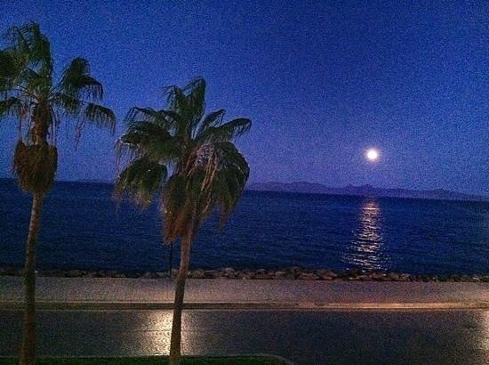 Loreto Islas: The View