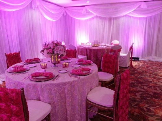 Hilton Garden Inn Dayton Beavercreek: Beautiful PINK function room