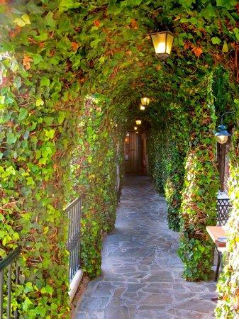 Hotel Carabeo: Passageway to restaurant