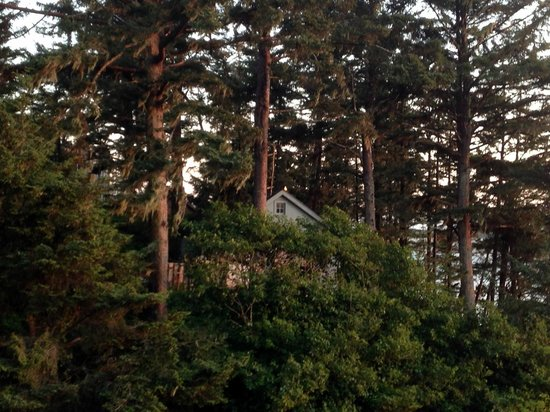 Terimore Lodging by the Sea: View from deck of cabin - gorgeous area!