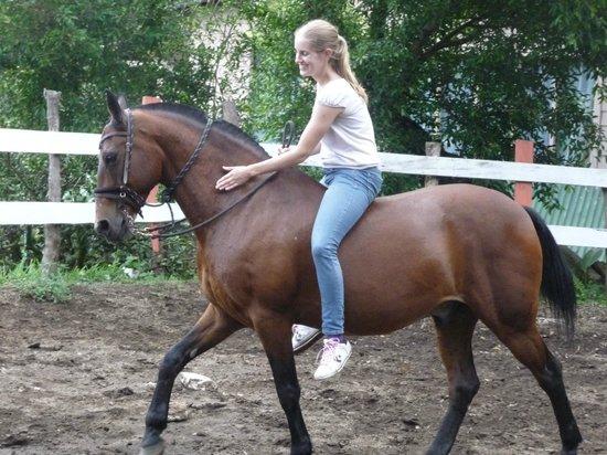 Horse Trek Monteverde: Riding Gladiator bareback
