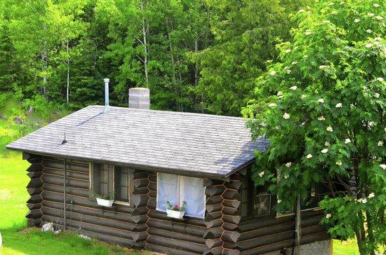 Windigo Lodge : A cute cabin on property