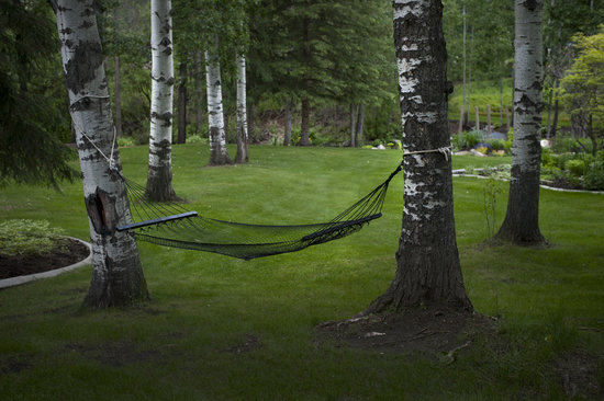 A River Road Bed & Breakfast : Relax in the hammock.