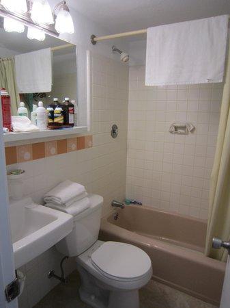 Compass Family Resort Motel : Bathroom