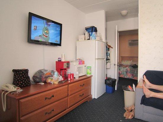 Compass Family Resort Motel : Fridge & TV