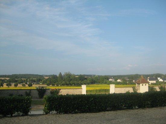 Domaine de la Maison Neuve: view from our window