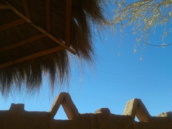 Los Algarrobos De Checar: esta es la vista q se obtiene recostado en el quincho