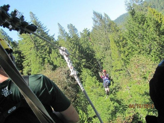 Sonoma Canopy Tours the 2nd longest zip line length. & the 2nd longest zip line length... - Picture of Sonoma Canopy Tours ...