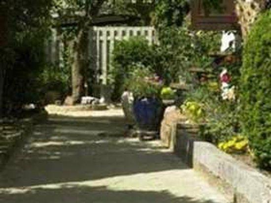 Royalty Hostel : The Garden