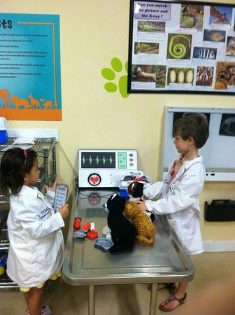 The Children's Museum of the Treasure Coast: Vet's Office sponsored by the Humane Society