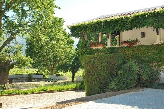 The Wine House Hotel & Restaurant: Gebäude auf der Quinta
