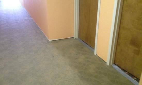 Red Roof Inn & Suites Jackson - Brandon : No baseboards!  New carpeting??!!! Seriously?!