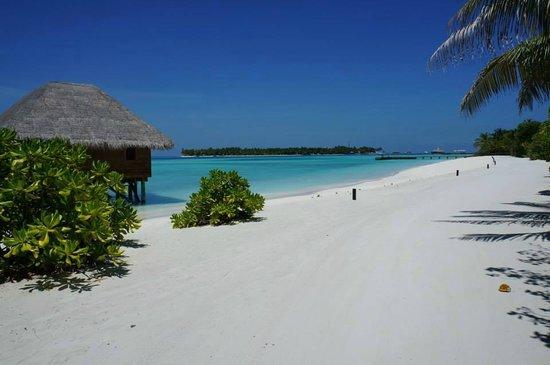 Tranquil picture of conrad maldives rangali island for Conrad rangali maldivas