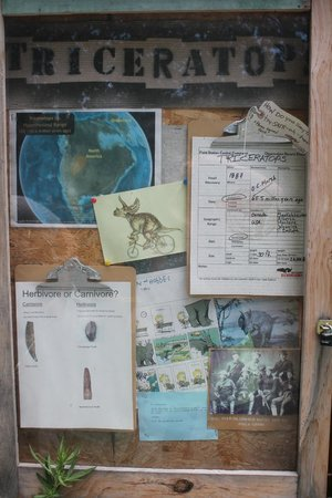 Field Station: Dinosaurs: Field Station Bulletin Board that gives facts about the different dinosaurs