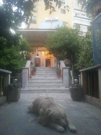 Hostel Albania: Paradise