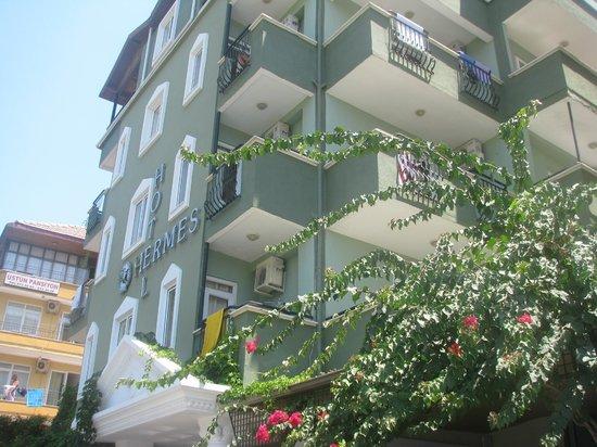 Kleopatra Hermes Beach Hotel: Hotel