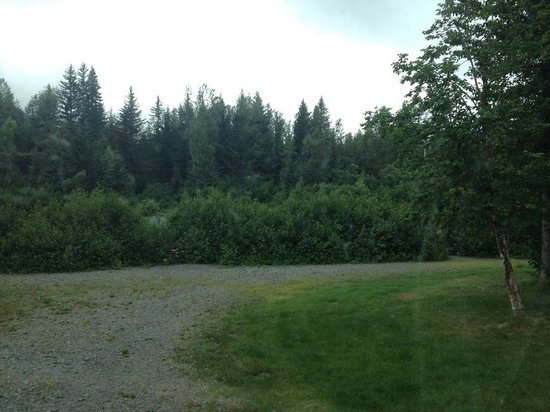 Stoney Creek RV Park: One is from the ground of the creek