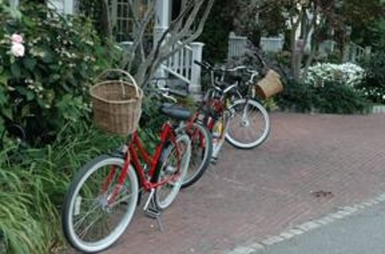 The Hob Knob: Wonderful Cruising Bikes to Rent at Hotel