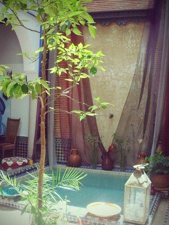 Riad Tamarrakecht : Le bassin (mur d'eau au fond)