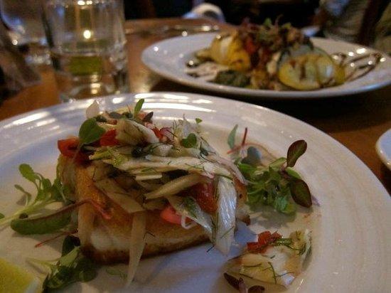 "Damariscotta River Grill: ""Creative presentation and gourmet food """