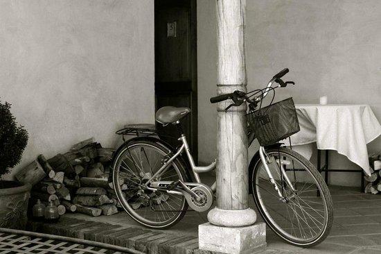 Posada Colchagua: Un paseo en bicicleta