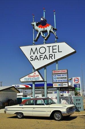 Motel Safari : Hotel