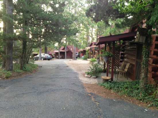 Tall Pines Inn: Cabins