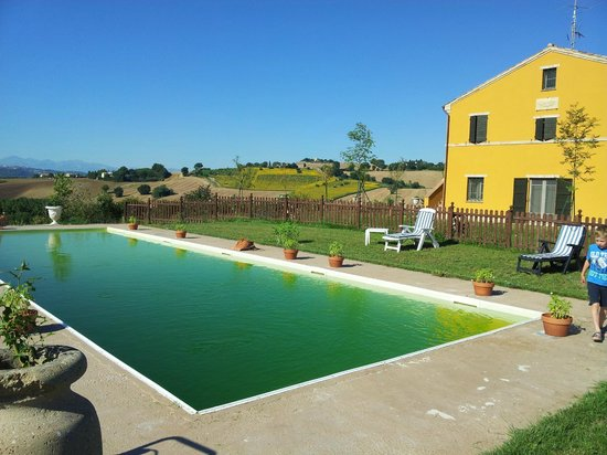 Villa Scuderi Country House: Piscina