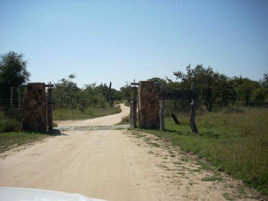 Tamboti Camp: Primer ingreso a Tamboti