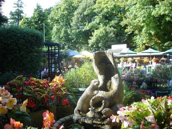 Rhylstone Gardens Tea Room: An entrance to Rylstone Gardens Tea Room, Popham Road, Shanklin