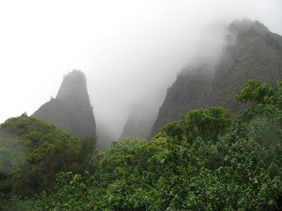 Iao Valley State Monument: Iao Needle