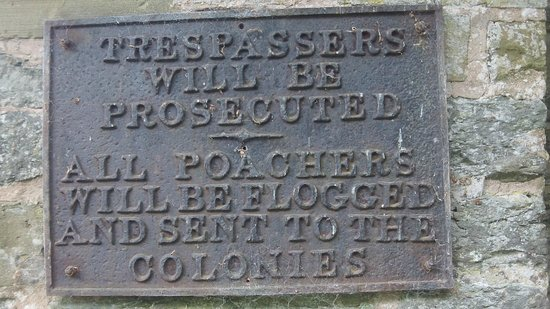Walcot Hall: Warning!