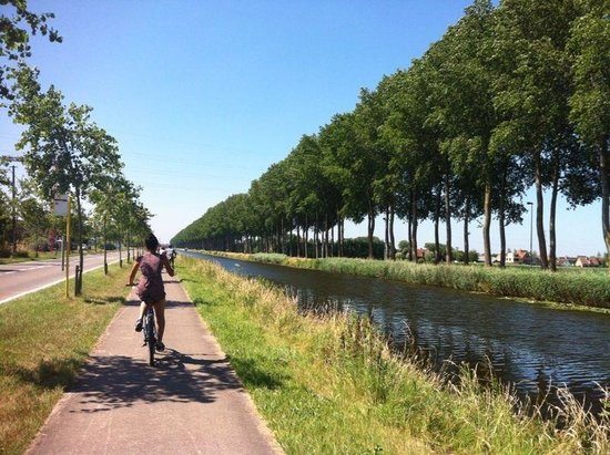 The Pink Bear Bicycle Company: Cycling back from Damme