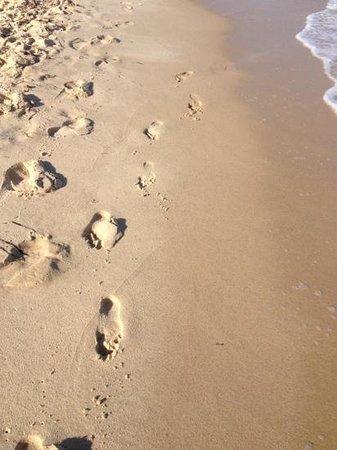 Sol Azur Beach Hotel: clean beach