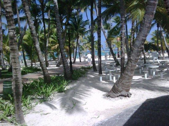 Hotel Riu Bambu: playa